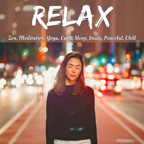Relax: Zen, Meditation, Yoga, Calm, Sleep, Study, Peaceful, Chill de Various Artists