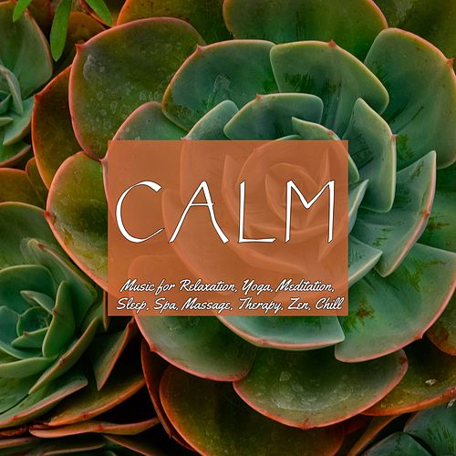 Calm Music for Relaxation, Yoga, Meditation, Sleep, Spa, Massage, Therapy, Zen, Chill de Various Artists