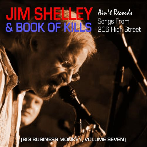Songs from 206 High Street: Big Business Monkey, Vol. Seven de Jim Shelley