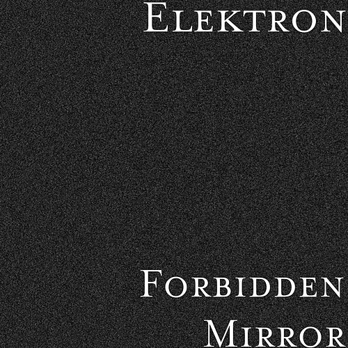 Forbidden Mirror by Elektron