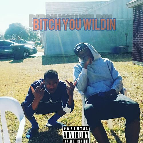Bitch You Wildin by Shaquees