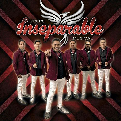 Adiòs amor by Inseparable musical