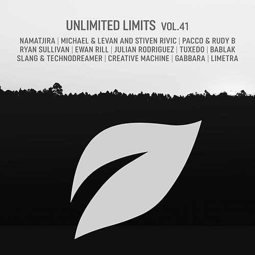 Unlimited Limits, Vol.41 by Various Artists