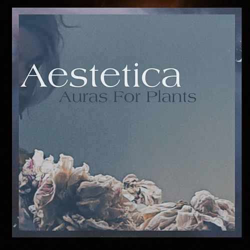 Auras for Plants by Aestetica