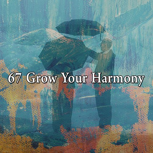 67 Grow Your Harmony by Asian Traditional Music