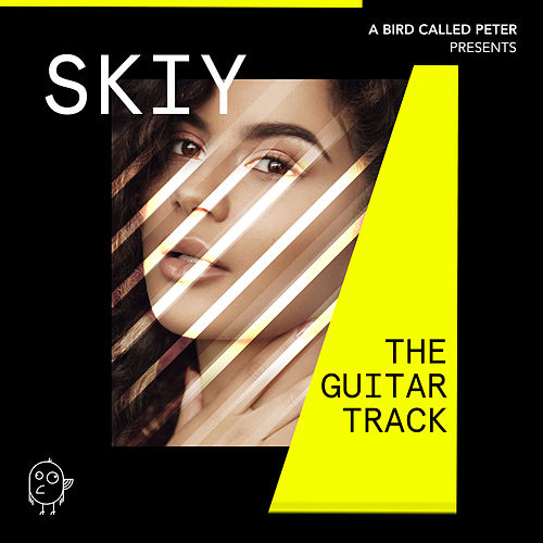 The Guitar Track by Skiy