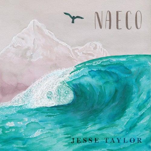 Naeco von Jesse Taylor