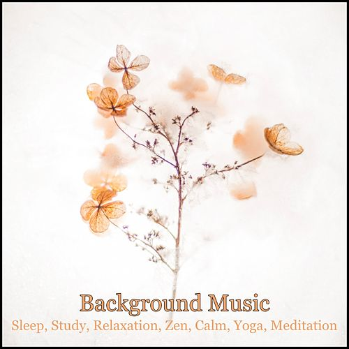 Background Music: Sleep, Study, Relaxation, Zen, Calm, Yoga, Meditation by Various Artists