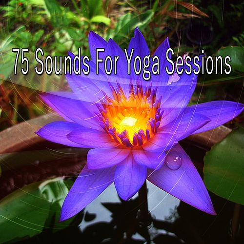 75 Sounds for Yoga Sessions de Meditación Música Ambiente