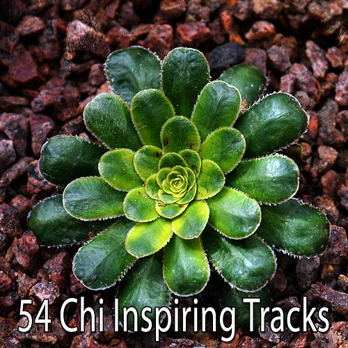 54 Chi Inspiring Tracks by Zen Music Garden
