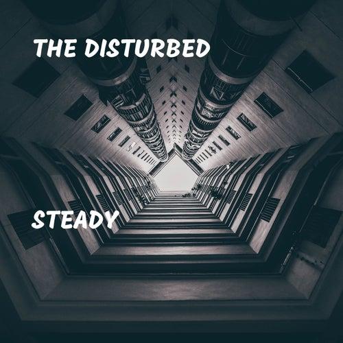 Steady de Disturbed