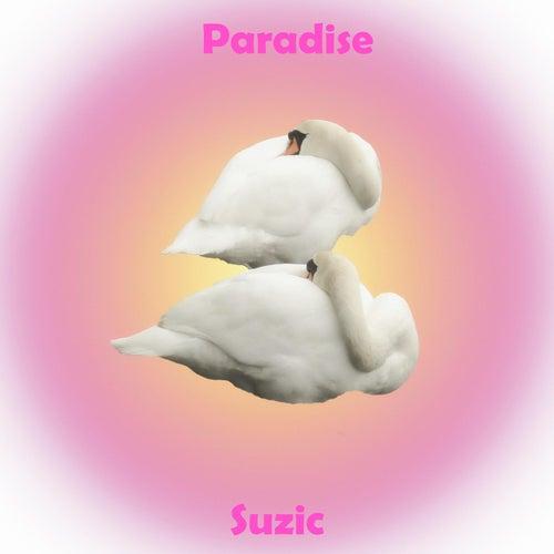 Paradise by Suzic