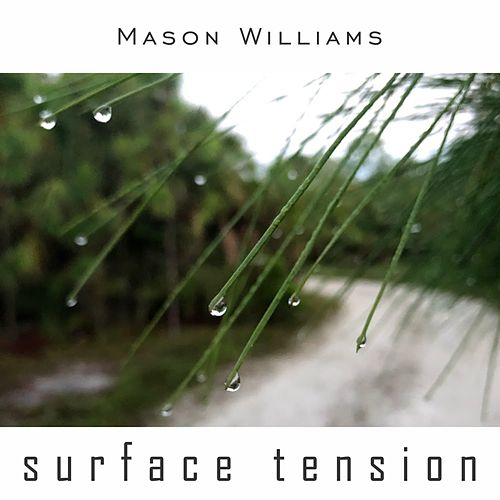 Surface Tension by Mason Williams