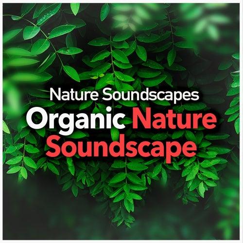 Organic Nature Soundscape von Nature Soundscapes