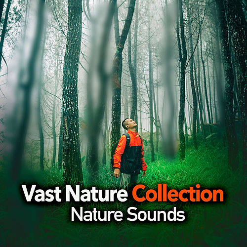 Vast Nature Collection by Nature Sounds (1)