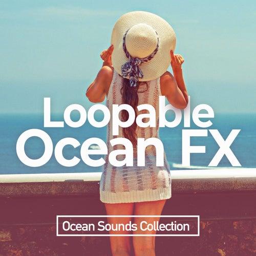 Loopable Ocean FX de Ocean Sounds Collection (1)