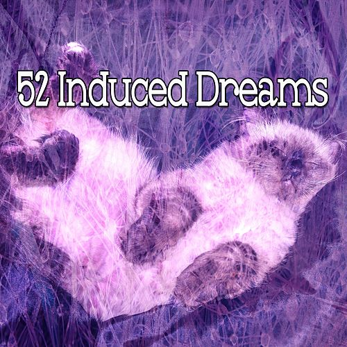 52 Induced Dreams de Best Relaxing SPA Music