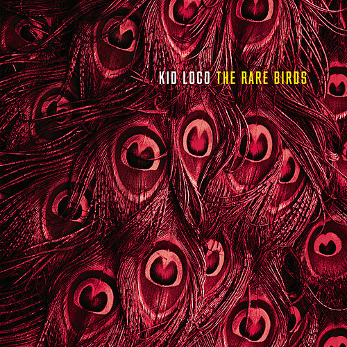 The Rare Birds by Kid Loco