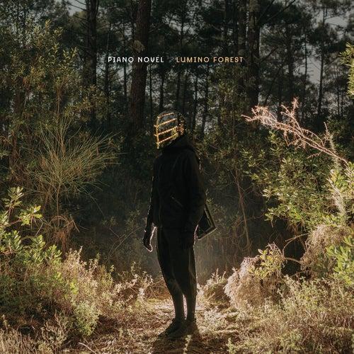 Lumino Forest von Piano Novel