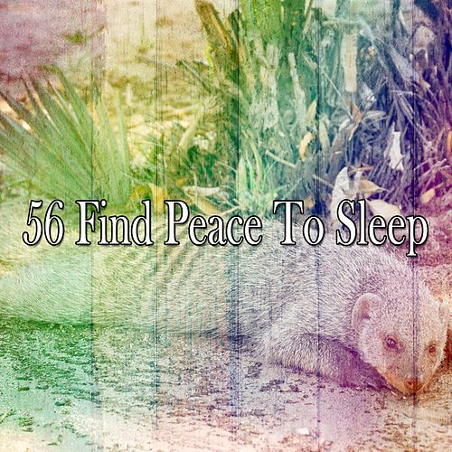 56 Find Peace to Sleep de White Noise Babies