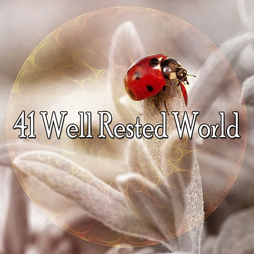 41 Well Rested World de S.P.A