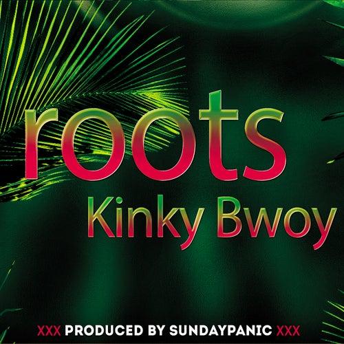 Roots de Kinky Bwoy