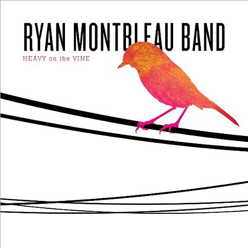 Heavy On the Vine von Ryan Montbleau Band