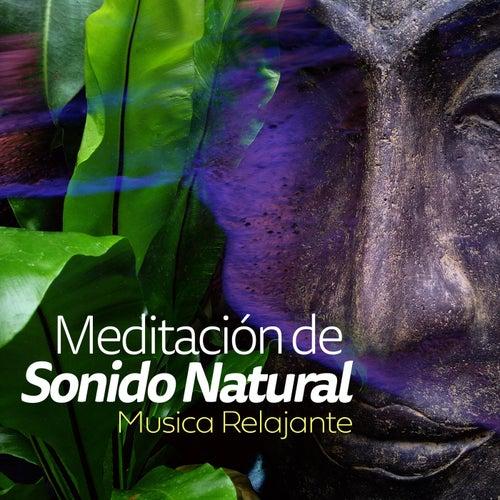 Meditación de Sonido Natural de Musica Relajante