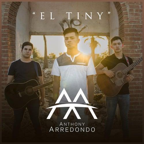 El Tiny by Anthony Arredondo