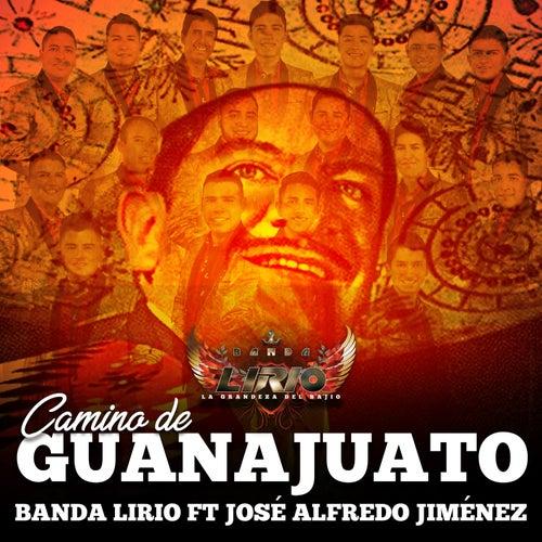 Camino de Guanajuato de Banda Lirio