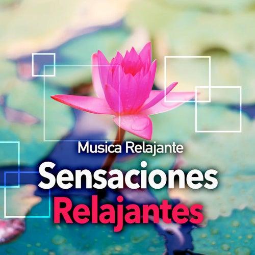 Sensaciones Relajantes de Musica Relajante