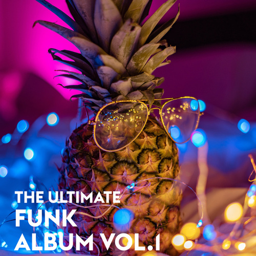The Ultimate Funk Album Vol.1 von Various Artists
