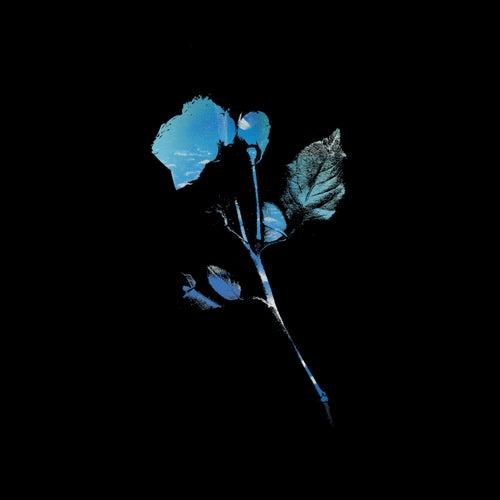 Terrified (Robin Guthrie Remix) de Tamaryn