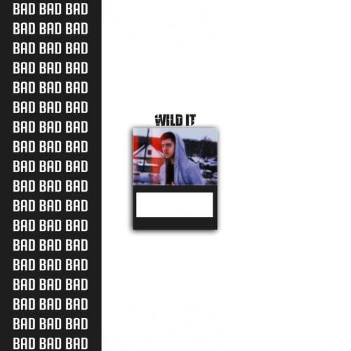 B. A. D. de Wild IT