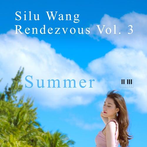Rendezvous, Vol. 3: Summer de Silu Wang