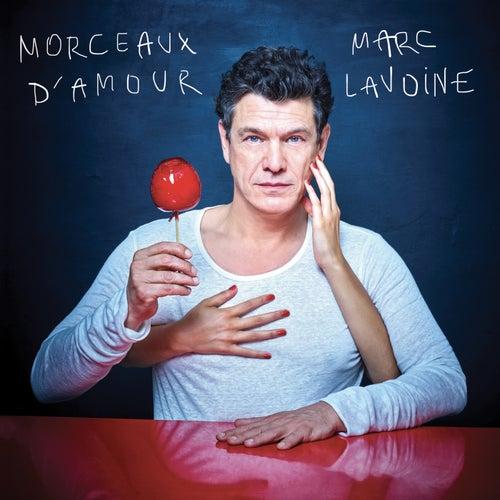 Morceaux d'amour de Marc Lavoine