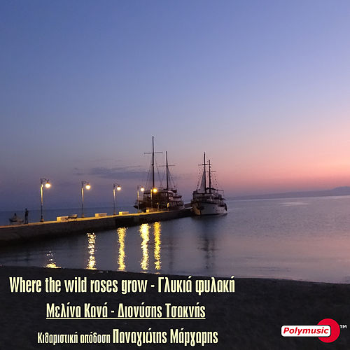 "Melina Kana (Μελίνα Κανά): ""Where The Wild Roses Grow - Glykia Fylaki"""