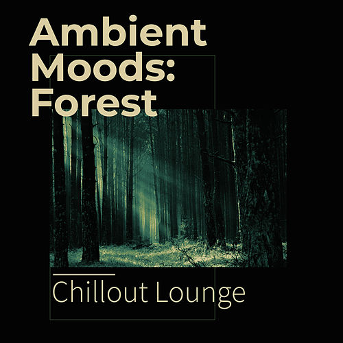 Ambient Moods: Forest von Chillout Lounge