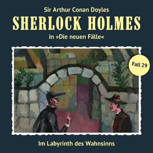 Die neuen Fälle, Fall 29: Im Labyrinth des Wahnsinns von Sherlock Holmes
