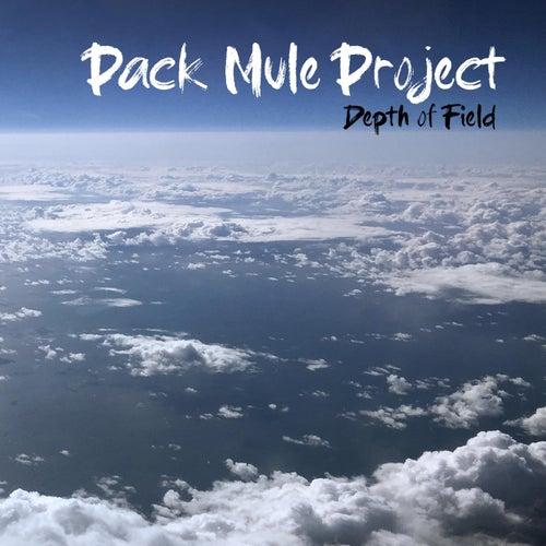 Depth of Field de Pack Mule Project
