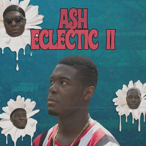Eclectic II de Ash