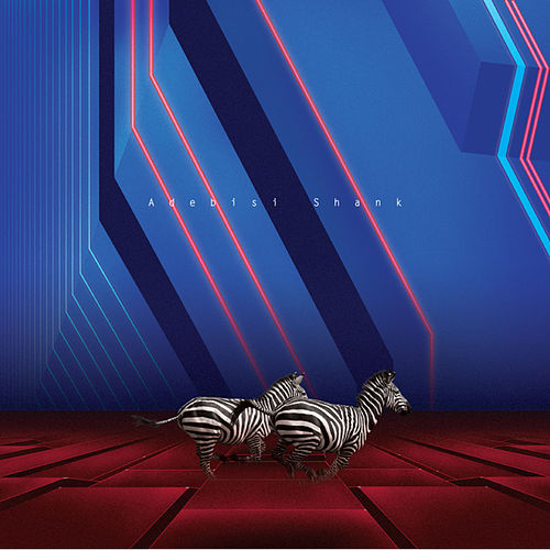 This is the second album of a band called Adebisi Shank by Adebisi Shank