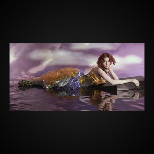 Oil Of Every Pearl's Un-Insides Non-Stop Remix Album van Sophie