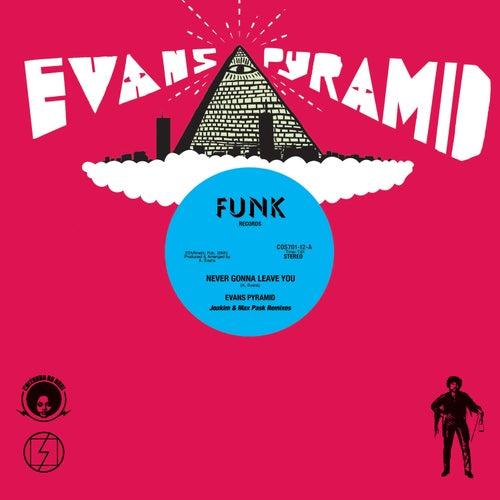 Never Gonna Leave You (Joakim and Max PaskRemixes) de Evans Pyramid