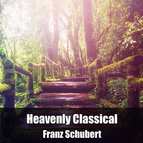 Heavenly Classical Franz Schubert by Franz Schubert