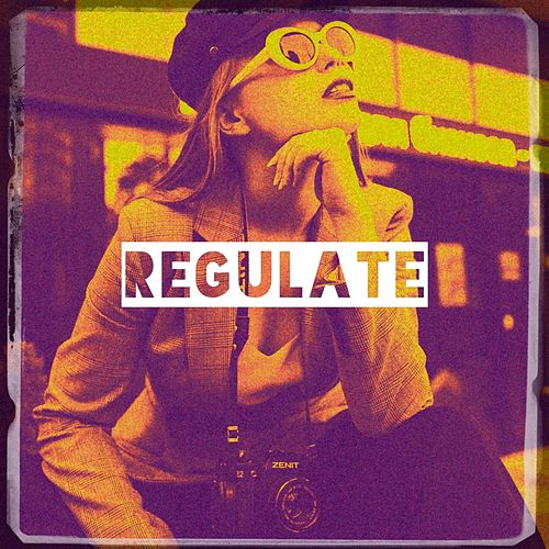 Regulate by Various Artists