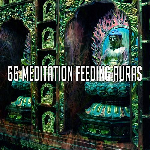 66 Meditation Feeding Auras de Massage Tribe