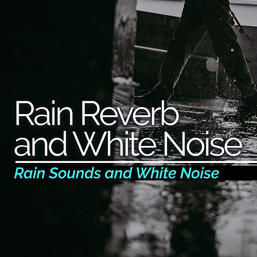 Rain Reverb and White Noise by Rain Sounds and White Noise