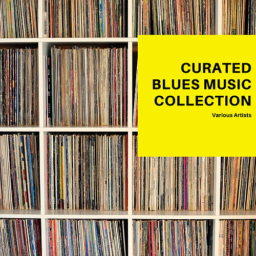 Curated Blues Music Collection von Various Artists