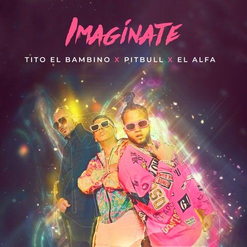 Imagínate by Tito 'El Bambino', Pitbull, El Alfa
